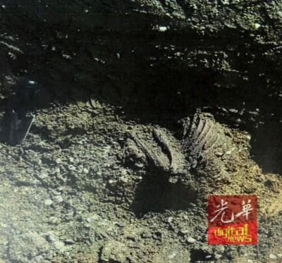 在威北GUAR KEPAH发现的史前文物。