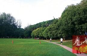 相对于直线跑线,绕圈跑线更能环顾四周的环境,图为青年公园草场及跑道。