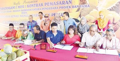 联邦农业销售局和果农签署玻璃市芒果、哈密瓜及季节性水果营销协议。