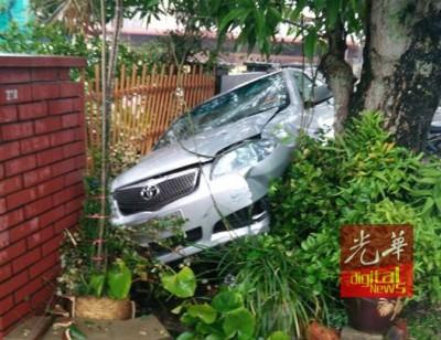 华人女学院生的自行车撞进住家篱笆后卡在大树。(网络图片)