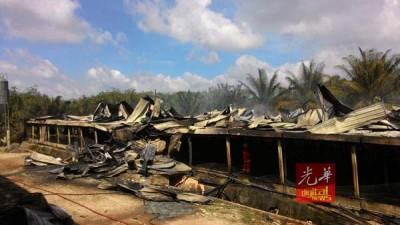 鸡寮内的7万多只小鸡被活活烧死。
