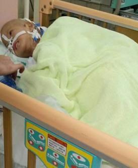 小锦鸿今早在台北进行第一次手术。