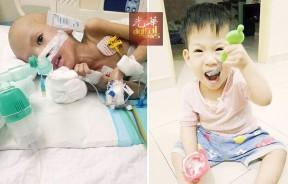 入住吉隆坡中央医院后,刘锦鸿身上多处插满医疗管。刘锦鸿原本食量惊人,如今却只能在医院依靠点滴和营养液度日。
