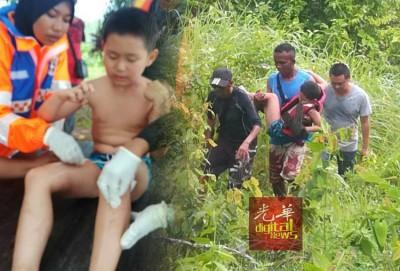 男童与伴随他的沙滩男孩掉落到树林中,所幸他们仅受轻伤。