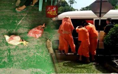 16名华裔男子周四由警方分两辆客货车载到江沙法庭申请延扣。