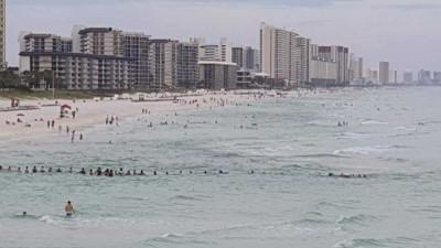 热情民众共同救出受困泳客。(互联网图片)