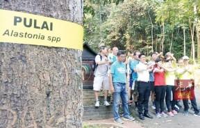 """登山客在蒲莱山脚下的一棵蒲莱树下,比出""""不""""的手势,呼吁当局不要把人民当摇钱树,收取高昂的150令吉登山准证费。"""