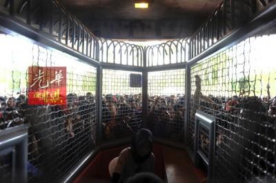 由于群情汹涌有失控迹象,售票柜台被迫暂停卖票。
