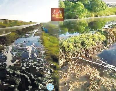 (左)威南浮罗布隆垃圾土埋场溢出污水,当地渔民担忧将影响生态。(右)鱼只死亡率飙高,村民们都怀疑是垃圾场污水所致。