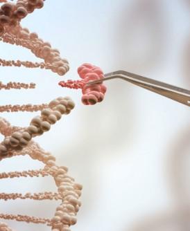 专家将电脑病毒隐藏在一段DNA内,并利用这段DNA成功骇入电脑系统。