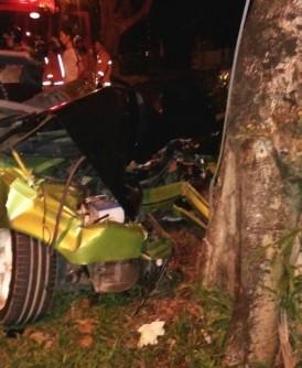 国产车撞向大树,车头毁不成形。