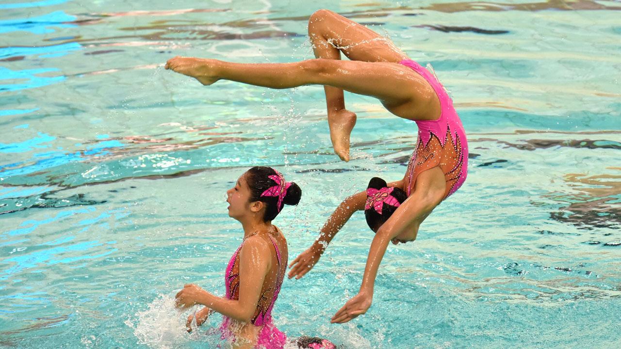 中国跳水梦之队在香港九龙公园室内游泳池举行慈善大汇演,香港花样游泳代表队也同台表演。