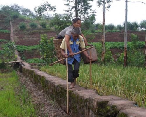 曹树才每天用的大背篓孭老婆到田里干活。