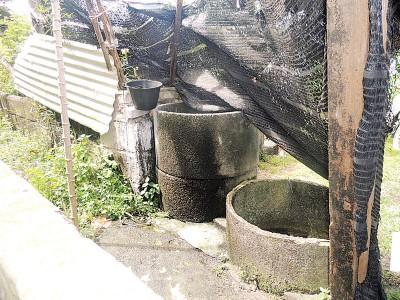 陈亚吉之通常冲洗是依赖这口井水。