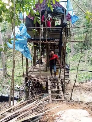 一家5口因家境贫困,在胶园自建竹棚居住。