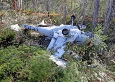 小型飞机坠毁于草丛中。(互联网图片)