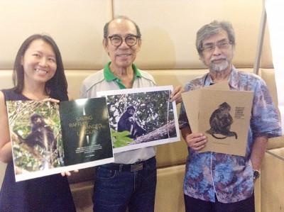 洪慧芳(左起)、周国球及玛斯欧将带领马新两国考察工作坊调查仅遍布与柔新地区的印尼叶猴。