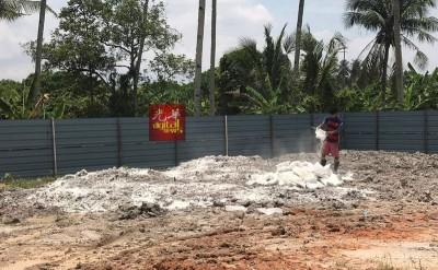 溺毙猪只土埋地点铺盖白灰。