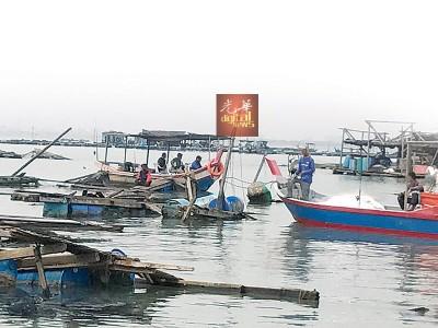 四面八方涌入的渔船趁灾打劫。