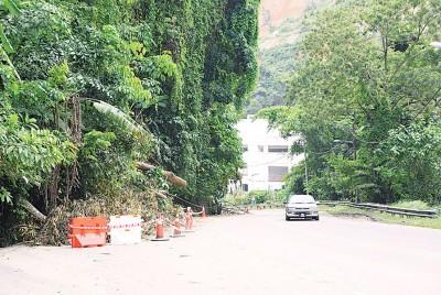 于绿园组屋往垄尾方向的入口处,随发生倒塌的树尚未清理。