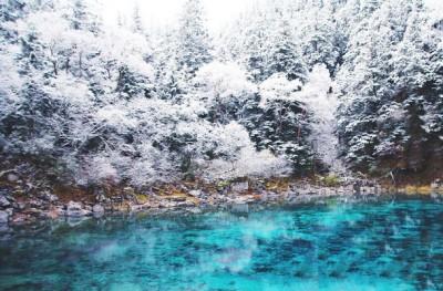 九寨沟迎来了入冬后的率先集降雪,景区内银装素裹、玉树冰花,若九寨沟更加玲珑剔透。
