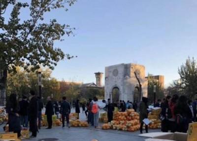 今年柚子和火龙果被学生高票选中。