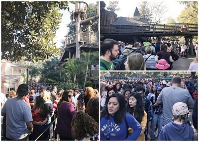 游客挤爆停电的迪斯尼乐园。