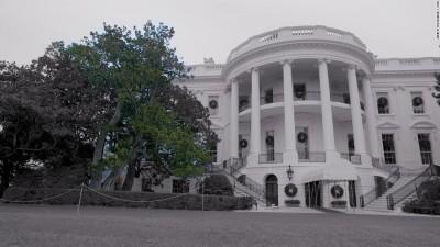 杰克逊木兰树是白宫最古老的平等棵树。