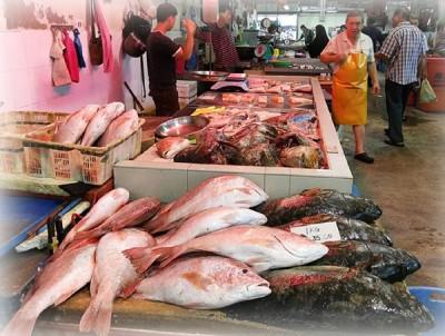 冷天致鱼产锐减50顶80%,地面养殖鱼喊涨10%。
