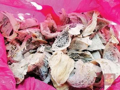 未经过漂白化毛的燕窝每公斤售价约4000令吉至5000令吉。