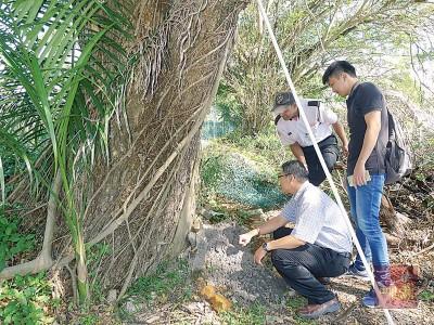 陈勇桦以张泰双同保障人员陪同下,检验大批蚂蚁的蚁巢。