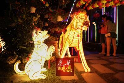 相当戊戌年,极乐寺也产生狗灯饰,惟妙惟肖。