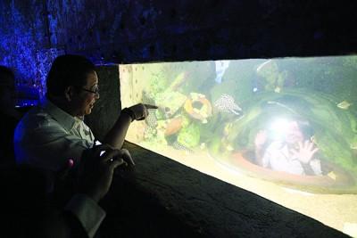 林秀琴(右)尝试精品水族馆的近距离接触海底动物一环,左为林冠英。
