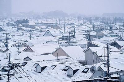 东京上周经历入冬以来最强寒流侵袭。(法新社照片)