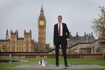 2014年11月13天,高森同丹吉当伦敦会面。