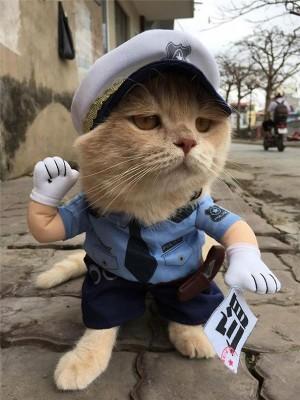 """""""狗""""的警察装扮。"""
