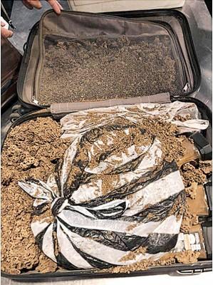 男子在埃塞俄比亚挖掘蚁巢后,再空运回国。