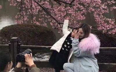 李小璐以及女甜馨日前以东京赏樱。