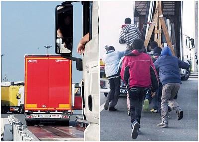 加来港难民问题严重。