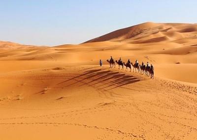 撒哈拉沙漠之面积在100年内净增了10%。