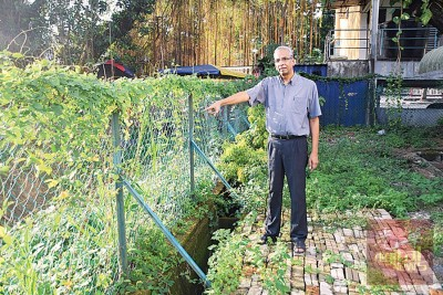 哥巴希望能增设一台自动水闸和围墙,以隔绝外来灾水。