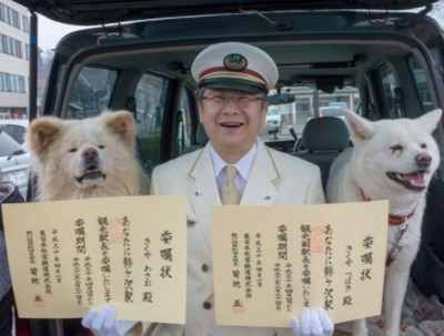 Wasao(左)和Tsubaki(右)再获选为鰺泽站站长和副站长。