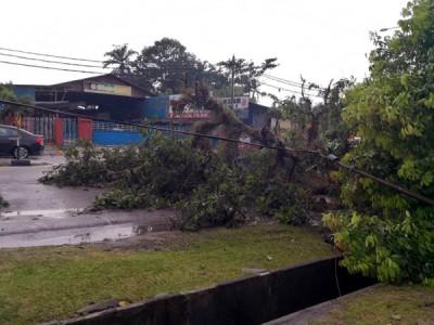内部同样中住家屋暴风摧毁。