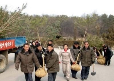 朝鲜荒漠化日趋严重,贪图为平壤民众到植树。