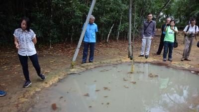中心职员在这个有一滩水的挑战设备,置放小鱼来猎食孑孓,防止蚊虫滋生。