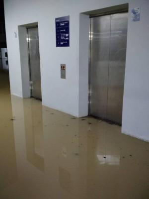 电梯检查及维修费,是一笔不少的数目。