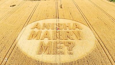 趟诺特在麦田圈写下求婚字句。