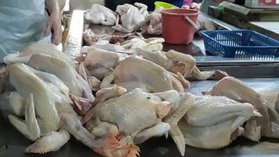 摆在架上的鸡任顾客选。