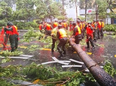 山竹为广东省带来严重毁坏。