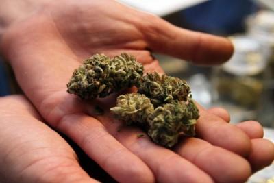 marihua_0